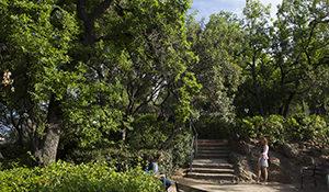 Correr por el Parque de Monterols